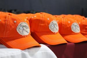 2017-hats